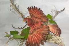 Mobile_Cardinal