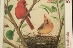 Awe, look at that beautiful pair of Northern Cardinals!
