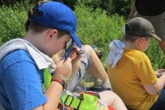 examining a fossil
