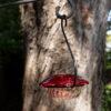 12 oz hummingbird feeder