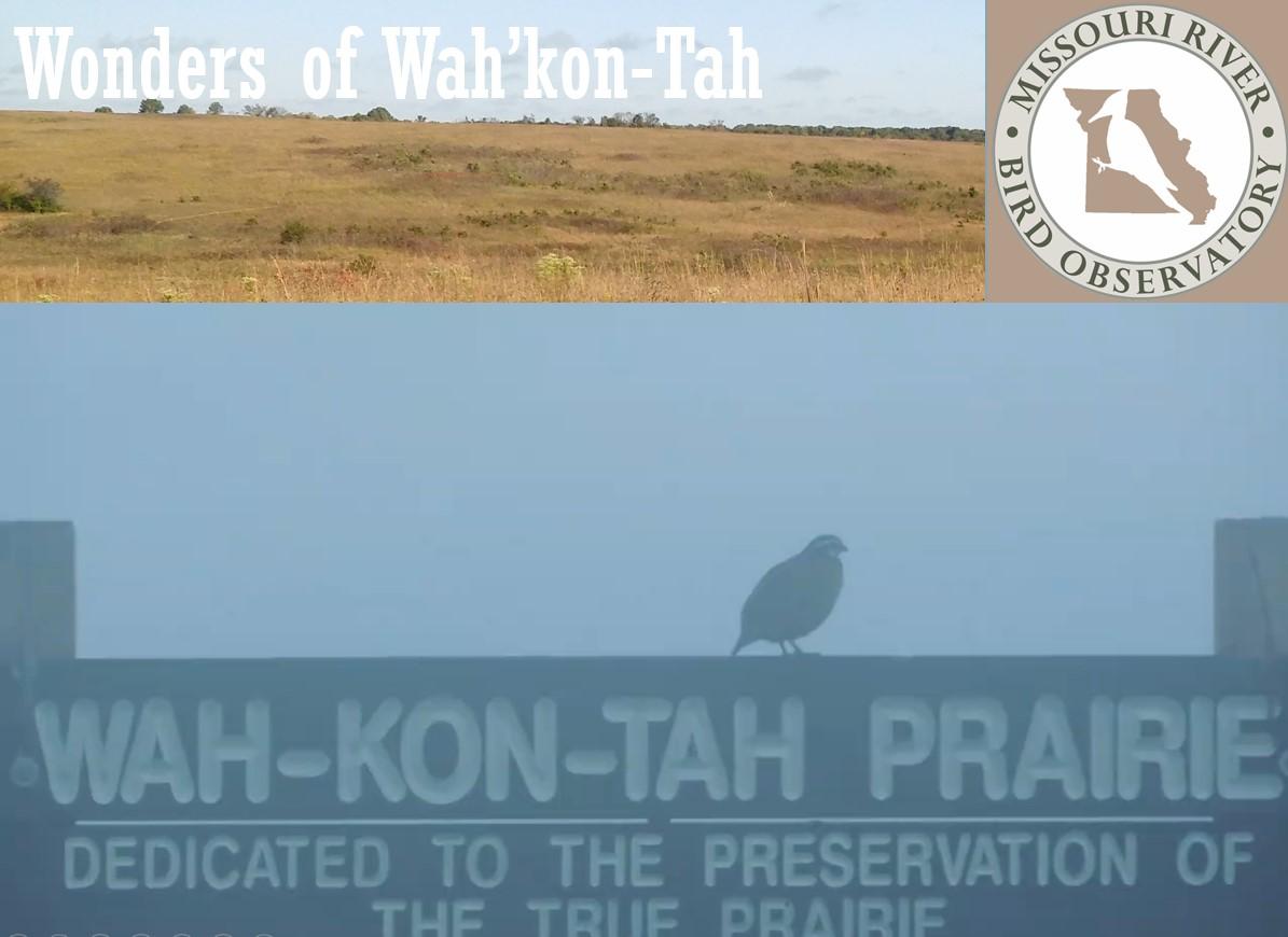 Wahkontah sign